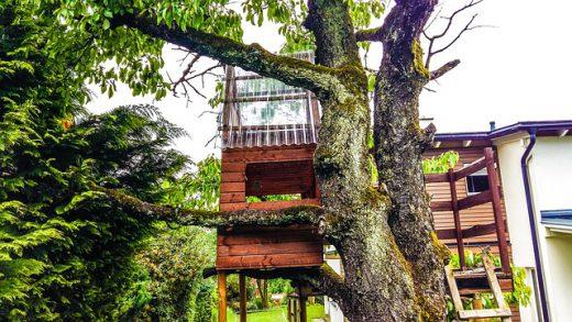 Эротический рассказ - Домик на дереве