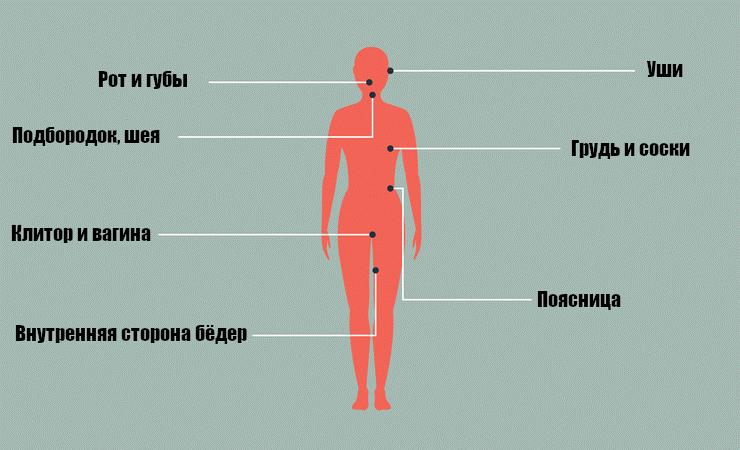 карта эрогенных зон у женщин