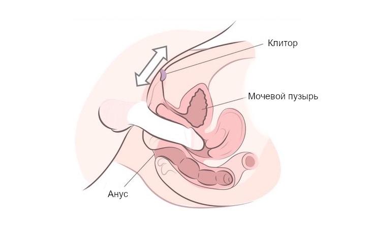 стимуляция клитора - инструкция для мужчин