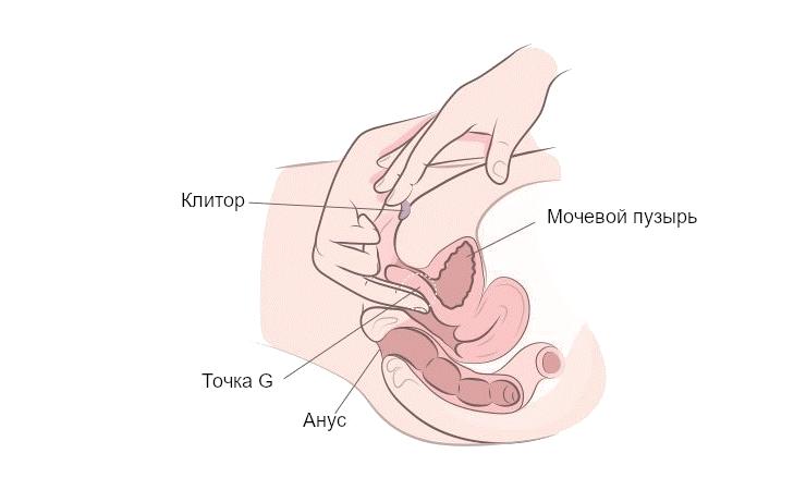 стимуляция клитора с проникновением во влагалище